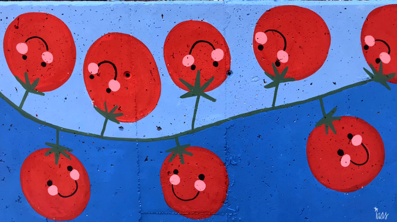 mural izas azulpatio ceip eduardo rojo huerto tomates cherry